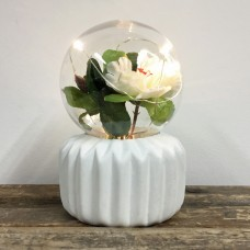 Plant Lamp - Flower Bulb - Ribbed Base