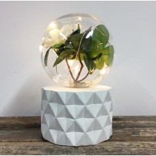 Plant Lamp - Flower Bulb with Facet Base